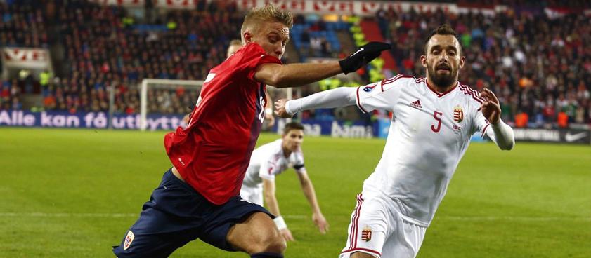 Сборная Венгрии - сборная Норвегии. Прогноз Олега Жукова